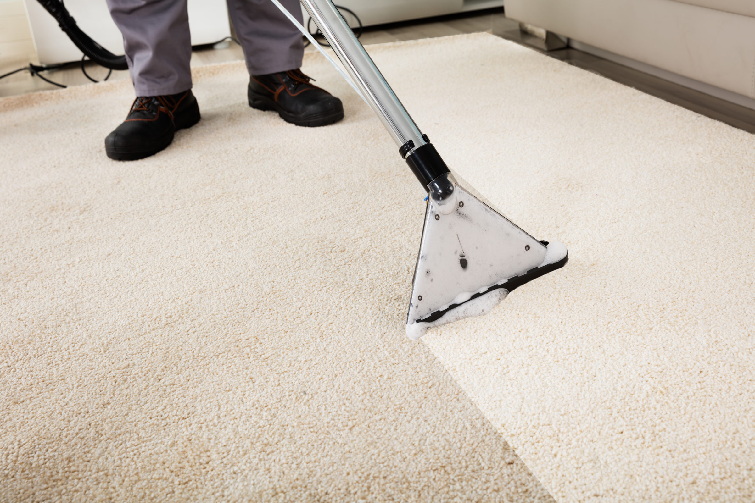 Palouse Carpet Cleaning Near Me   Man Cleaning Carpet