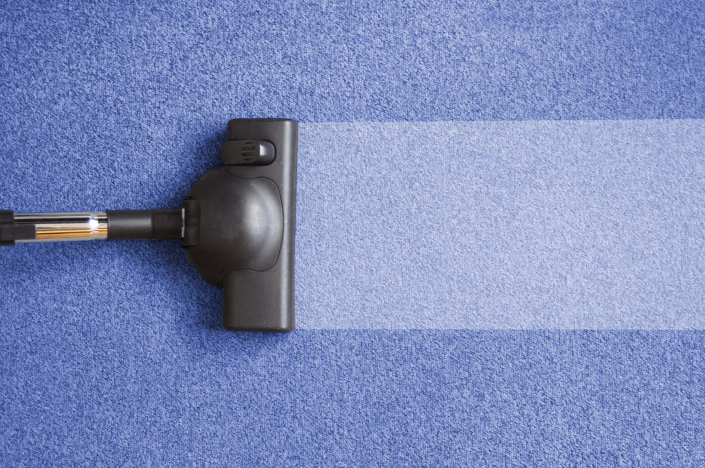 Palouse Carpet Cleaning Near Me   Cleaning A Carpet